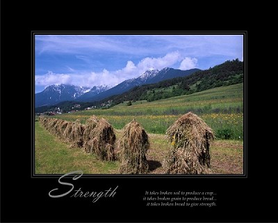 It takes broken soil to produce a crop...it takes broken grain to produce bread...it takes broken bread to give strength.